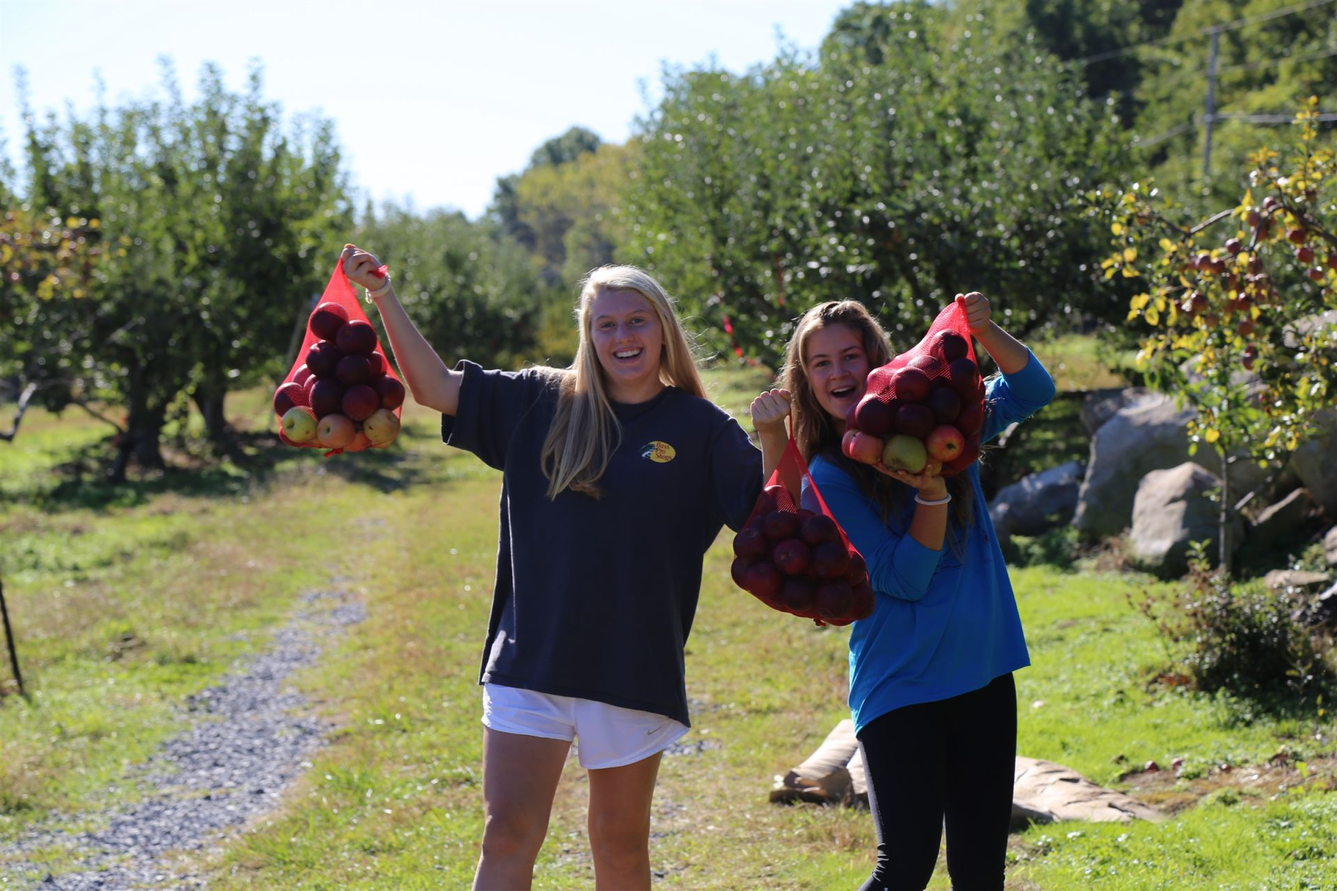 Freshmen glean hundreds of pounds of apples for the Society of St. Andrew (SoSA), a hunger relief nonprofit that aims to bring food that would be wasted to millions of Americans living in poverty.
