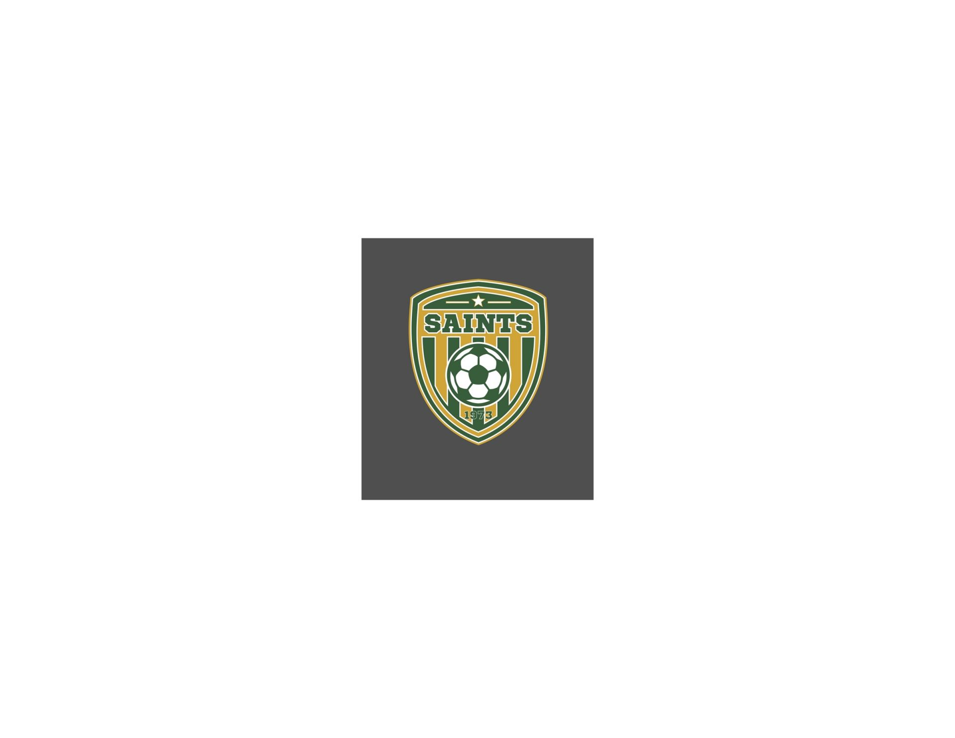 BCS Soccer new shield 2018-19