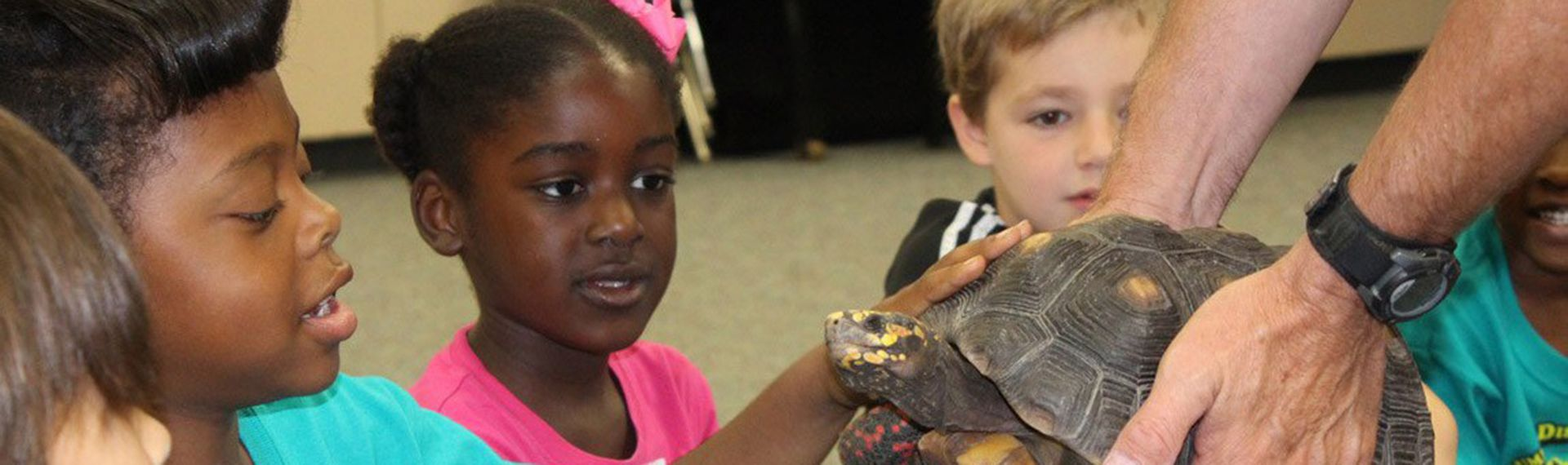 Lower School students gather to look at a turtle.