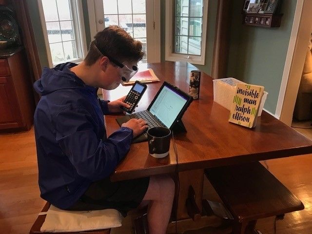 Male student E-learning at kitchen table