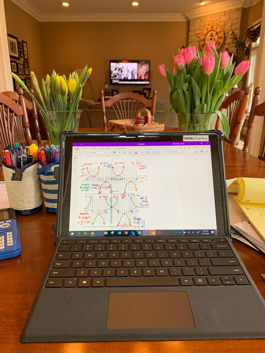 Teacher ready to teach math from home office. View of TV and flowers