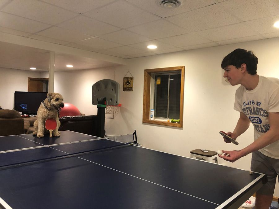Male student at home playing ping pong with his dog