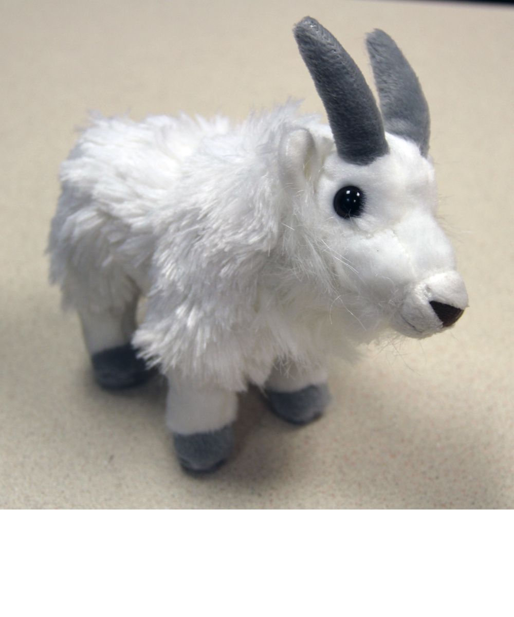 smaller size (AKA baby goats), $11.00