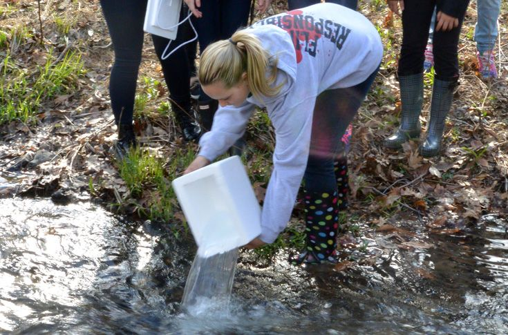 A Marine Biology class releases trout into the stream.