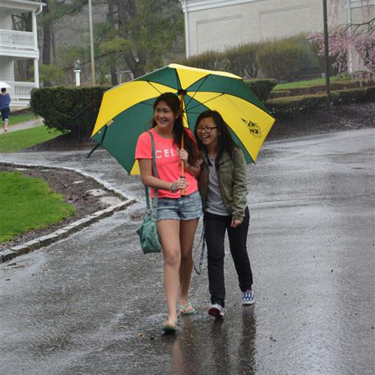 Don't get caught in the rain! The Grier Store has large umbrellas to keep you -and a friend- dry.