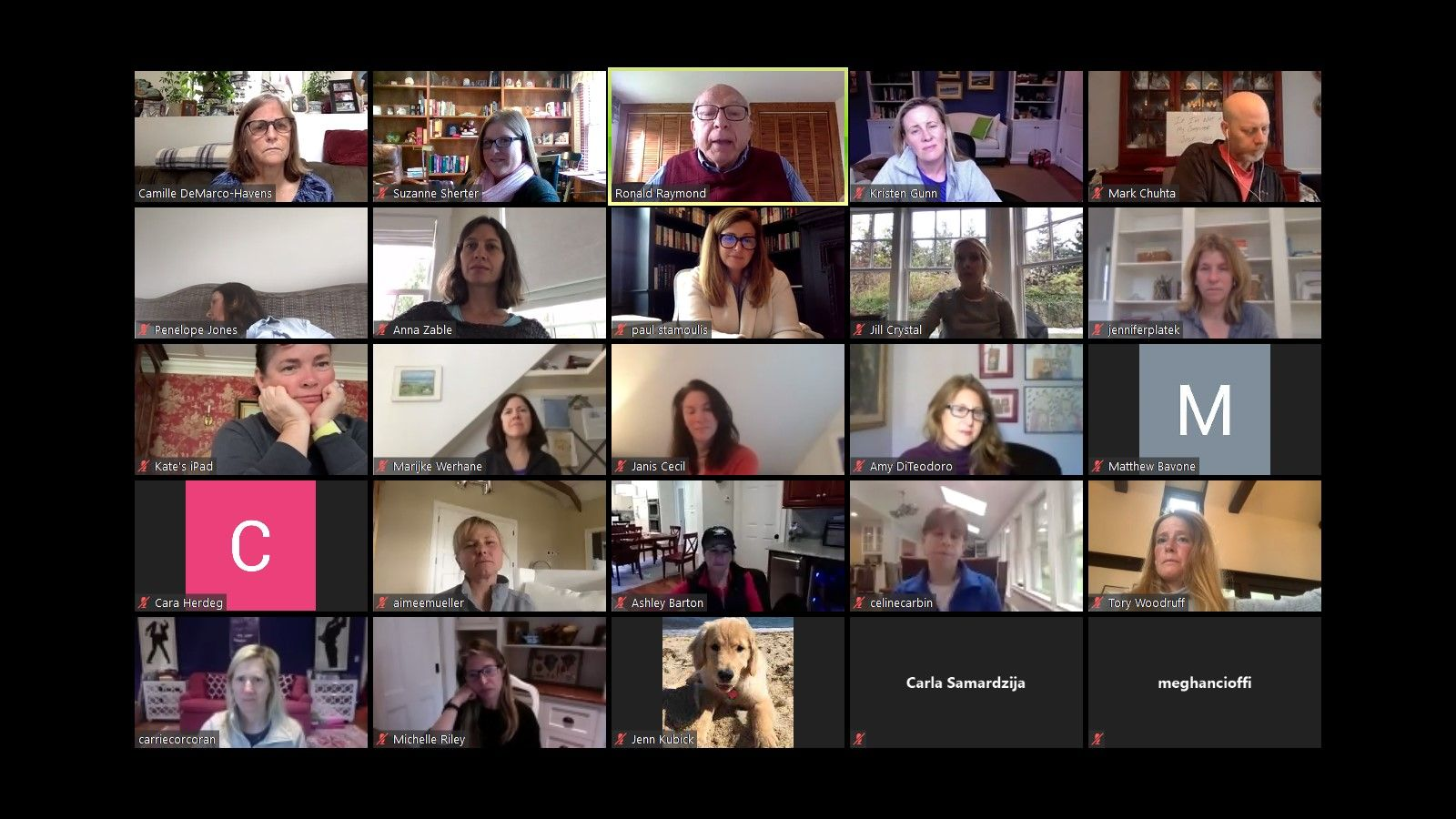 PA Virtual Brown Bag Lunch with Camille DeMarco-Havens and Dr. Raymond