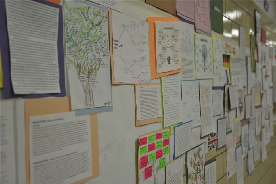 For much of the spring semester, family trees lined the walls of the Social Studies wing on the first floor. Each student of AP Human Geography displayed the results of her investigation into her family history. Specific focus was placed on how each family's story reflected the culture, agriculture, development, urbanization, and migration of the global world.