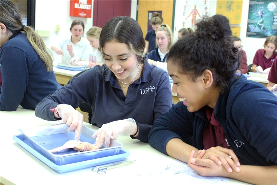 Jovana Vazquez Sanchez, DSHA '21, and Makayla Hughes, DSHA '21, dissect a chicken wing to study the muscles of the wing.