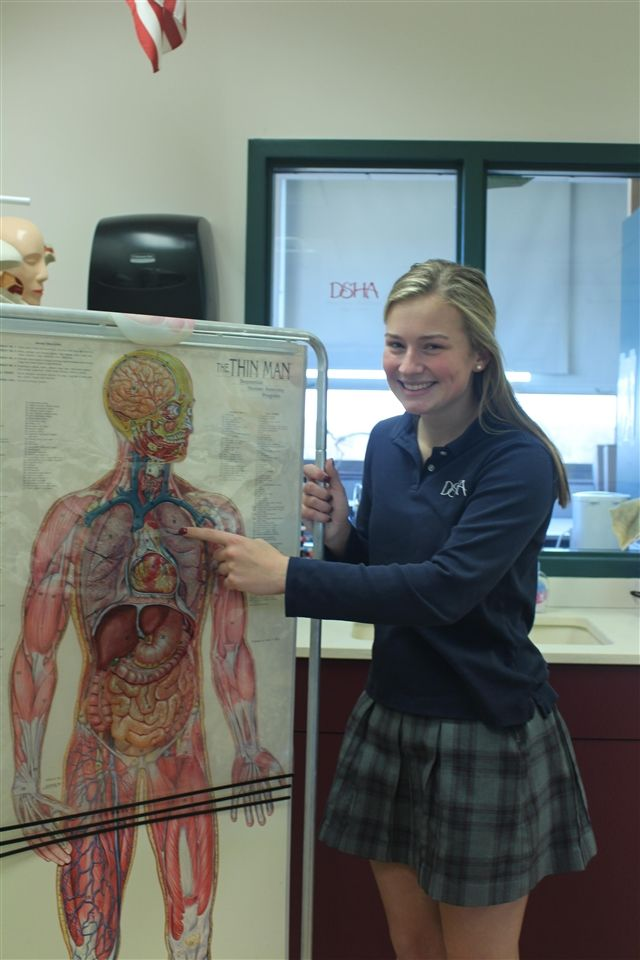 Lauren Schraufnagel, DSHA '20, is taking Anatomy and Physiology this school year in preparation to follow her passion—a career  in medicine.