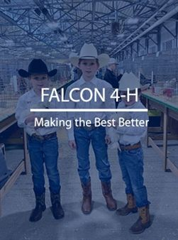 Visit the Falcon 4-H section to learn more about the program.