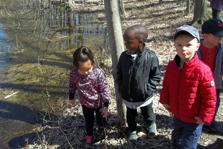 Young students on a nature walk