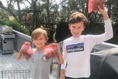 These brothers sold boiled peanuts to their neighbors to raise money for a local animal shelter.