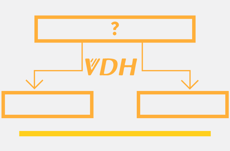 VDH Flowchart: Evaluating Symptoms
