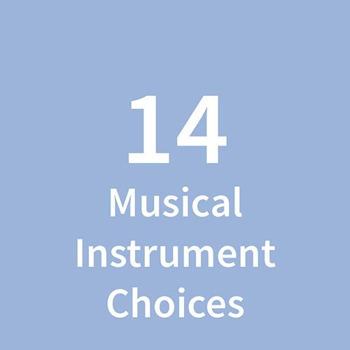 14 Instrumental Choices