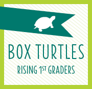 Box Turtles (Rising 1st)