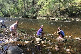 Fourth Graders Release Salmon in Connecticut River