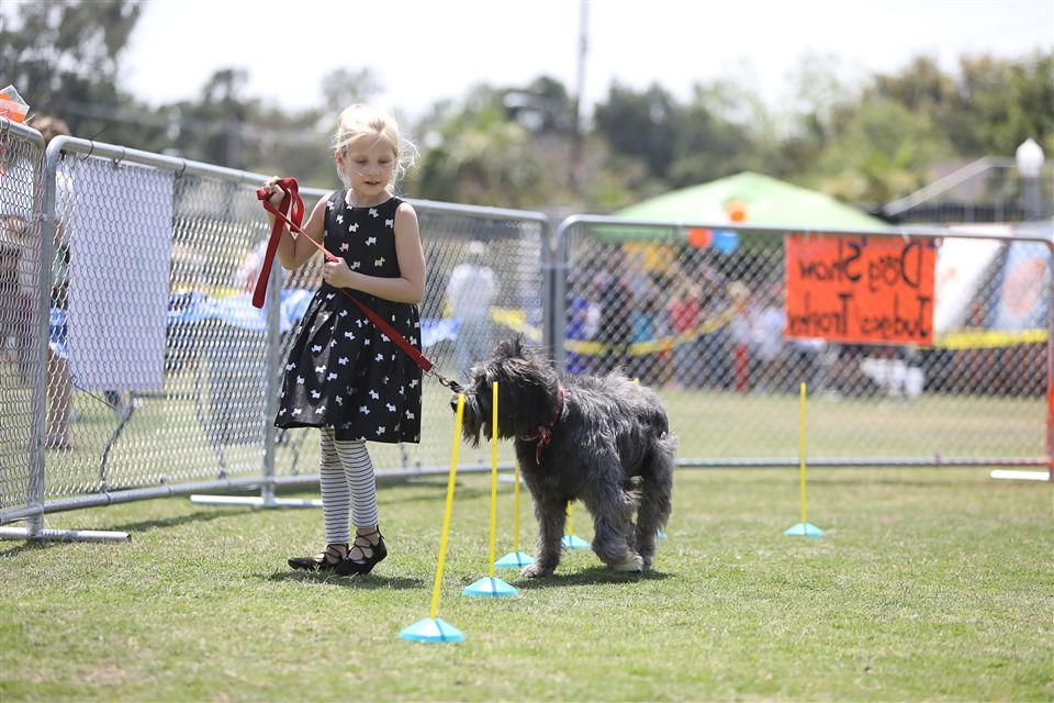 Dog Show Registration NOW OPEN!