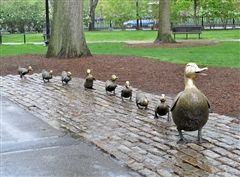 Make Way for Ducklings sculpure in Boston Public Garden; photo by Lorianne DiSabato on Flickr (noncommercial use permitted with attribution / no derivative works).