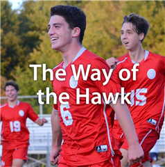 The Way of the Hawk