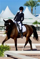 Senior Matty H. is halfway to receiving her bronze medal after competing at White Fences and at the Global Dressage Festival. Photo by Lisa Marie Bishop.