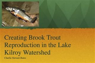 Creating Natural Reproduction of Brook Trout in Lake Kilroy