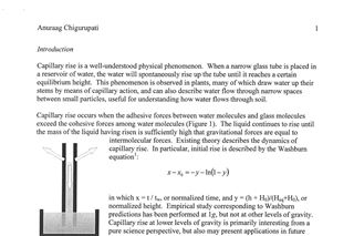 Examination of Liquid Bridge Dynamics under Simulated Microgravity