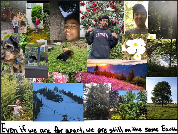 6th grade Earth Day celebration collage: enjoying our home natural environments