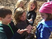 Second graders explore the forest of Warner Park.