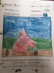 First graders sketched and colored while birdwatching in the outdoor classroom.