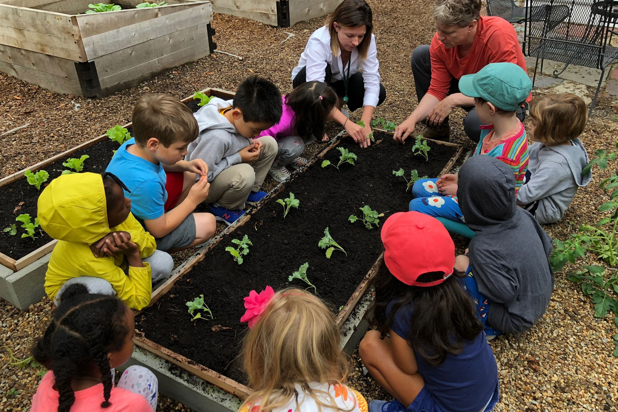 Lower School Garden