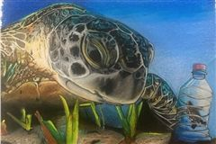 "Sergei Tourian, ""Sea Turtle Watching her Baby Trapped in Plastic Bottle"""