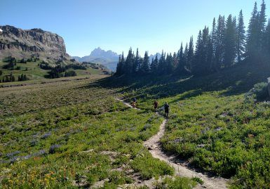 Peter Silverman '04 trail running in Grand Teton National Park, 2016. Credit Joffrey Peters