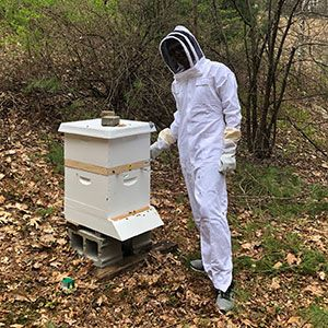 Yash Patel '20 at the Derryfield apiary