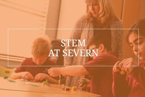 Link to STEM at Severn