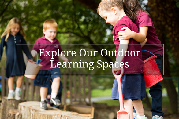 Link to Severn Early School information about our outdoor learning programs.