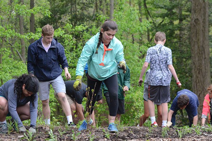 Working together, Severn faculty and students plant native species in the Stine Environmental Center.