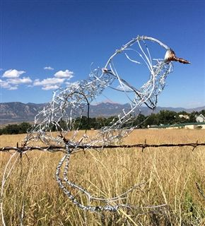 Freshman Arts classes created wire birds as one of their projects in the fall of 2014. The birds line the main campus road.