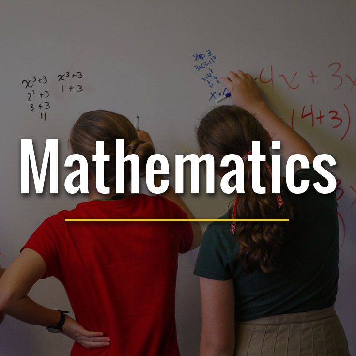 Students build strong skills and a productive disposition towards mathematics.