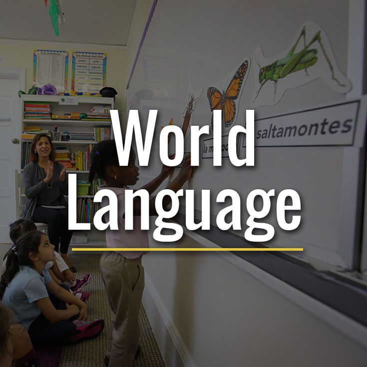 To study a language is to gain insights into different global perspectives and to gain both knowledge and experience to become a leader in today's world.