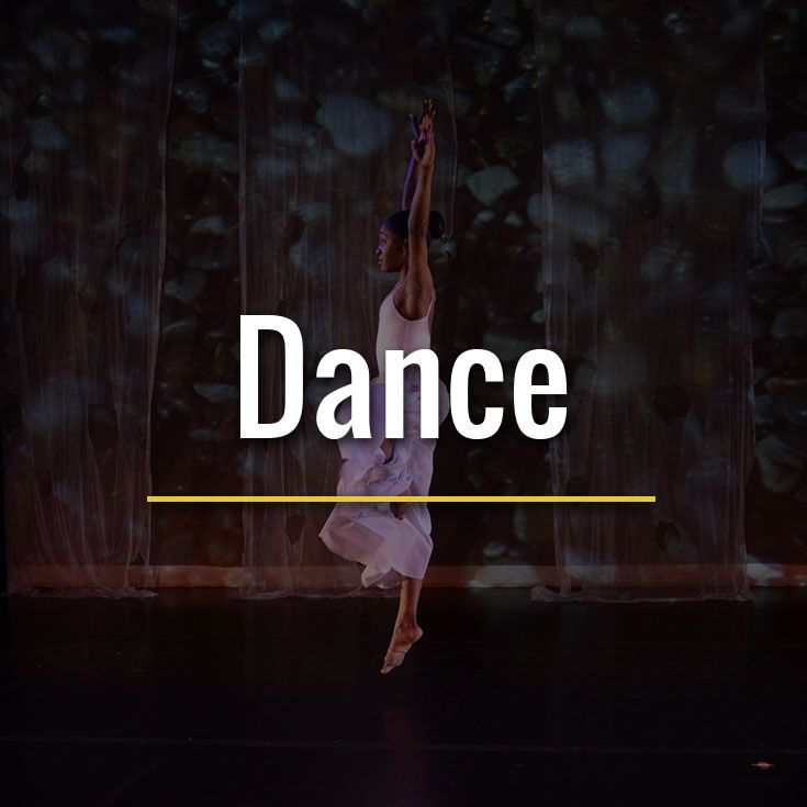 Through various dance techniques such as ballet, jazz and modern, students build skills and a solid movement vocabulary.