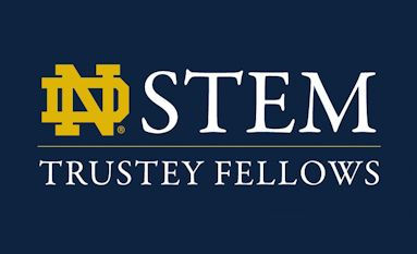 Trustey STEM Fellowship