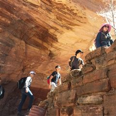 On the Angel's Landing hike
