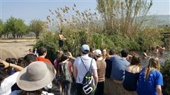 Juniors hiked along the Jordan River from the Cork Bridge to the B'not Ya'akov bridge