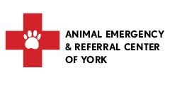 Animal Referral of York