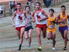 Cross Country Runners Excelling as they Prepare for State Meet