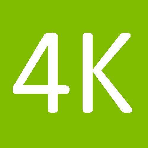 Downloadable Content : 4K Curriculum Snapshot