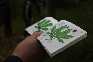 book about flora