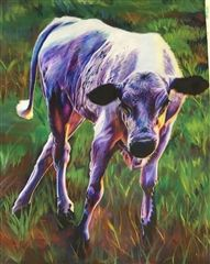 Cow created by Olivia Govednik in colored pencil