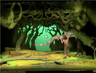 Video process of putting together the spring musical, Into the Woods.
