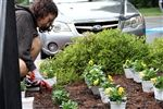 Some advisory groups supported on-campus landscaping efforts as part of the community outreach efforts on September 6.